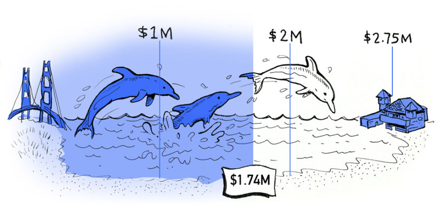 Dolphin Club fundraising graphic